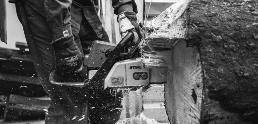 Everything to Know About Electric Chainsaws