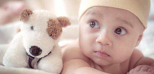What is the perfect toy that's suitable and essential for your new baby?